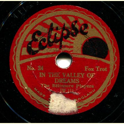 The Biltmore Players - In the Valley of Dreams / Wonderful Eyes